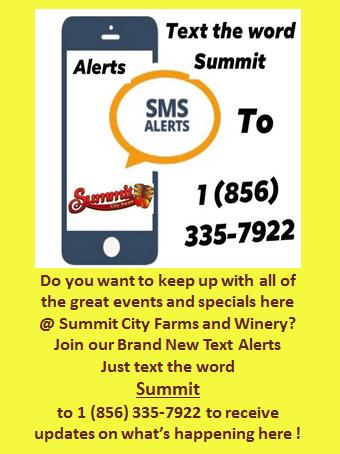 text alerts promotion image